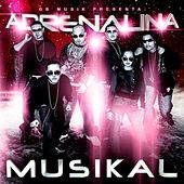 Play & Download Adrenalina Musikal by Various Artists | Napster