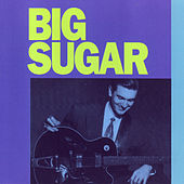 Big Sugar by Big Sugar