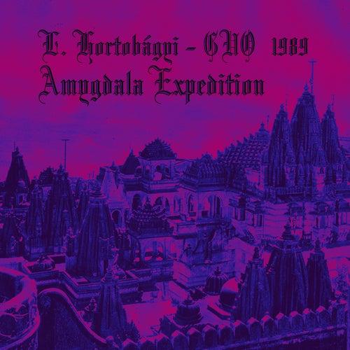 Play & Download Amygdala Expedition (1989) by László Hortobágyi - Gáyan ...   Napster