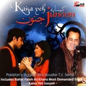 Kaisa Yeh Junoon by Various Artists