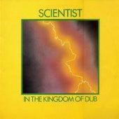 The Scientist Kingdom of Dub-VL-1981 Kingdom Records\wav by Scientist