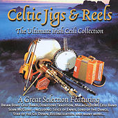 Celtic Jigs & Reels by Various Artists
