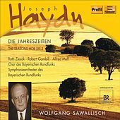 Play & Download Haydn, J.: The Seasons by Alfred Muff | Napster