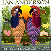 Play & Download The Secret Language Of Birds by Ian Anderson | Napster