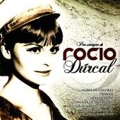 Play & Download Por Siempre Rocío Dúrcal by Rocío Dúrcal | Napster