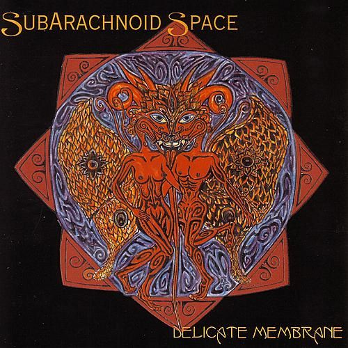 Play & Download Delicate Membrane by SubArachnoid Space | Napster