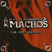 Play & Download La Reunion by Banda Machos | Napster