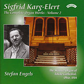 Complete Organ Works of Sigfrid Karg-Elert - Vol 2 - The Skinner Organ of Toledo Cathedral, Ohio, USA by Stefan Engels