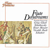 Flute Daydreams by Various Artists