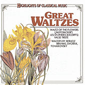 Play & Download Great Waltzes by Various Artists | Napster