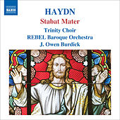 Play & Download Haydn, J.: Stabat Mater by Richard Lippold | Napster