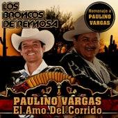 Paulino Vargas El Amo del Corrido by Los Broncos De Reynosa
