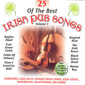 Play & Download 25 Of The Best Irish Pub Songs - Volume 1 by Various Artists | Napster