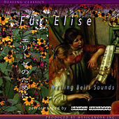 Play & Download Fur Elise by Shinji Ishihara | Napster