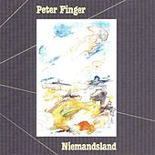 Play & Download Niemandsland by Peter Finger | Napster