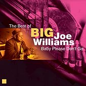Play & Download Baby Please Don't Go (The Best of) by Big Joe Williams | Napster