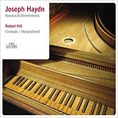 Play & Download Haydn: Sonatas and Divertimenti by Robert Hill | Napster