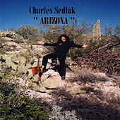 Arizona by Charles Sedlak