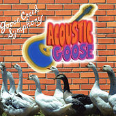Acoustic Goose by Goose Creek Symphony
