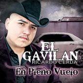 Play & Download En Pleno Vuelo by Ricardo Cerda | Napster