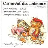 Saint-Saëns: Carnaval des animaux – Bizet: Jeux d'enfants – Berio: Opus number Zoo – Ibert: Trois pièces brèves by André Vauquet