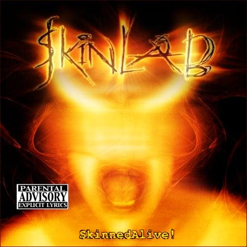 Play & Download De Rock 'n Roll Methode Vol. 13 (Instr. Guitar) by Various Artists | Napster
