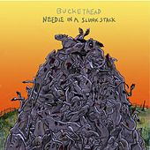 Play & Download Needle In A Slunk Stack by Buckethead | Napster