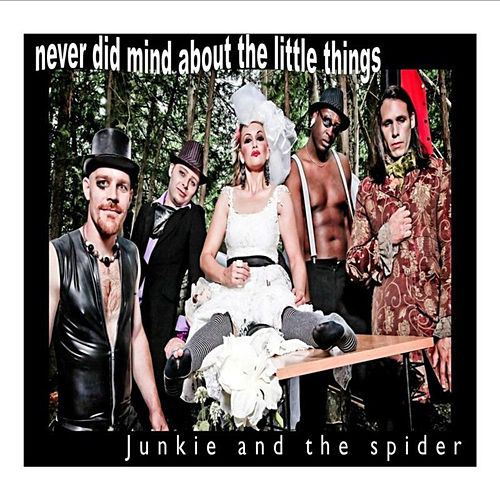 Never Did Mind About The Little Things by Junkie And The Spider