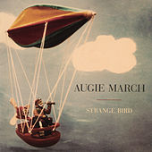 Play & Download Strange Bird by Augie March | Napster