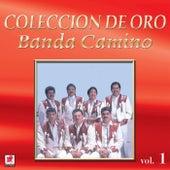 Ojitos De Golondrina by Banda Camino