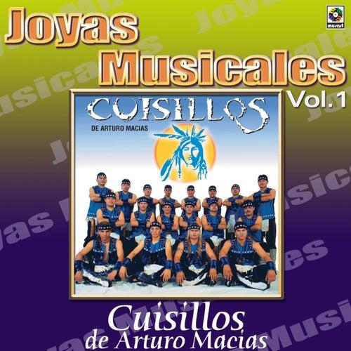 Play & Download Para Bailar Sabroso Vol.1 by Banda Cuisillos | Napster