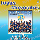 Play & Download Para Bailar Sabroso Vol.2 by Banda Cuisillos | Napster