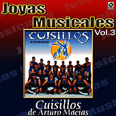 Play & Download Para Bailar Sabroso Vol.3 by Banda Cuisillos | Napster