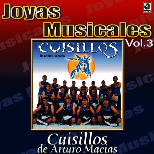 Para Bailar Sabroso Vol.3 by Banda Cuisillos