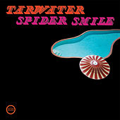 Spider Smile by Tarwater