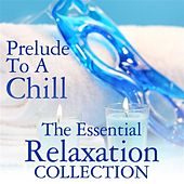 Play & Download Prelude To A Chill: The Essential Relaxation Collection by Various Artists | Napster