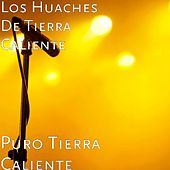 Play & Download Puro Tierra Caliente by Los Huaches De Tierra Caliente | Napster