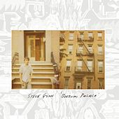 Play & Download Boerum Palace by Steve Gunn | Napster