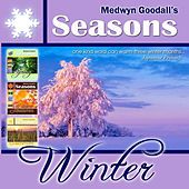 Play & Download Medwyn Goodalls WINTER by Medwyn Goodall | Napster