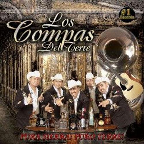 Play & Download Pura Sierra! Puro Terre! by Los Compas del Terre | Napster