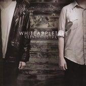 Velvet Mustache by White Apple Tree