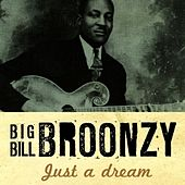 Play & Download Just A Dream by Big Bill Broonzy | Napster