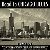 The Road To Chicago Blues  Vol 2 by Various Artists