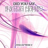 Play & Download Did You Say Electro House?, Vol. 2 by Various Artists | Napster