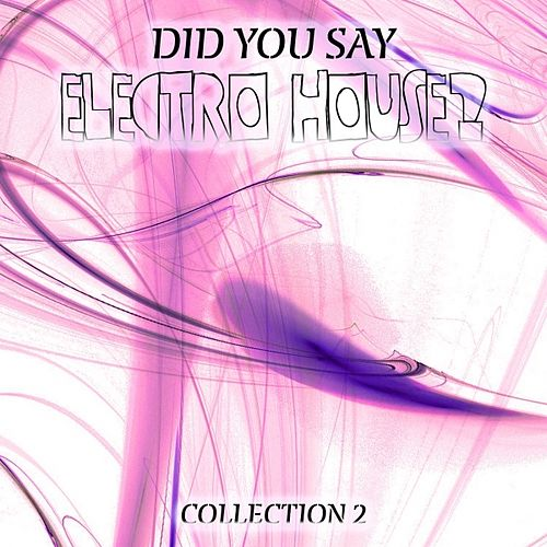 Did You Say Electro House?, Vol. 2 by Various Artists