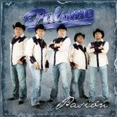Play & Download Pasión by Palomo | Napster