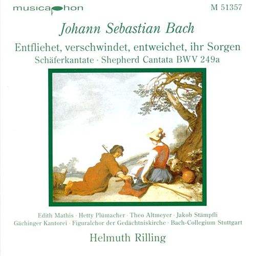 Play & Download Bach, J.S.: Entfliehet, Verschwindet, Entweichet, Ihr Sorgen / Concerto for Oboe and Violin in D Minor by Various Artists | Napster