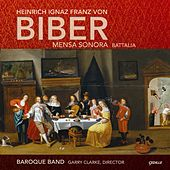 Play & Download Biber, H.I.F. von: Chamber Music by Garry Clarke | Napster