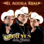 Play & Download El Águila Real by Los Dareyes De La Sierra | Napster