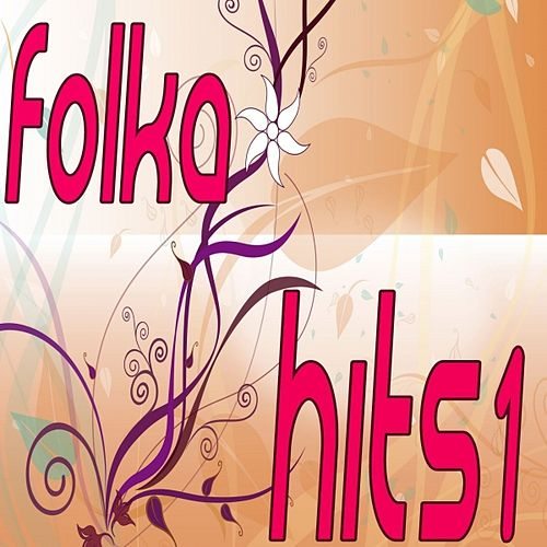 Folk Hits, Vol. 1 by Florida